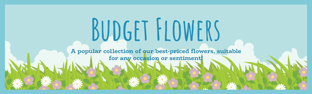 Budget Flowers