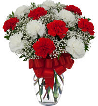12 Red and White Carnations