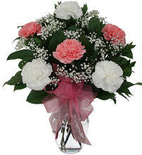 White & Pink Carnations