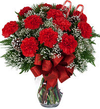 Classic Christmas Carnations