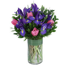 Purple Irises & Pink Tulips
