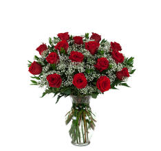 16 Red Roses