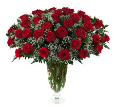 34 Red Roses