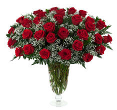 31 Red Roses