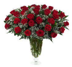 29 Red Roses