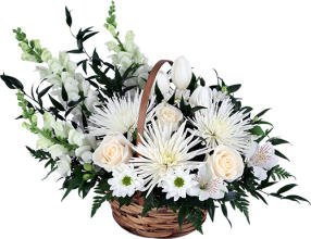 Sympathy flower arrangements canada flowers divinity mightylinksfo