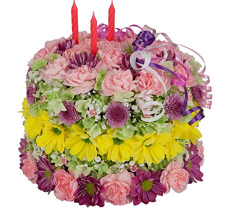 Birthday Cake Slice Funny