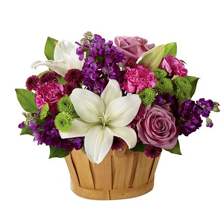 Ftd Fresh Focus Bouquet C16 5186 183 Ftd 174 Budget Flowers