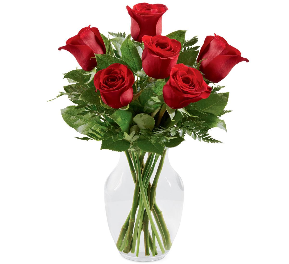 Roses Long Stem Roses Red Roses Canada Flowers