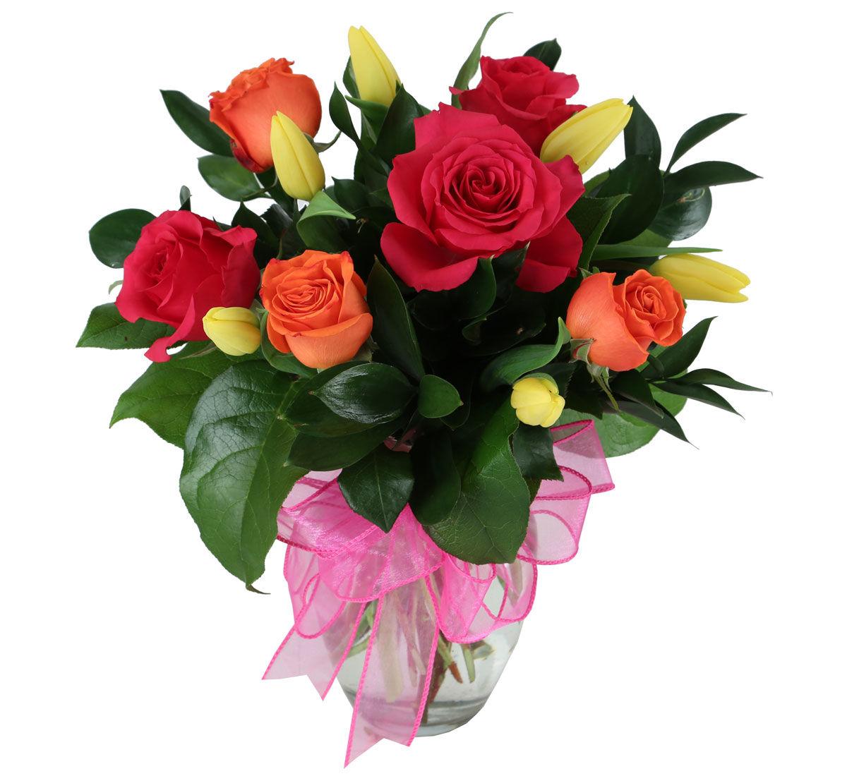 animation tulips canada flowers ca