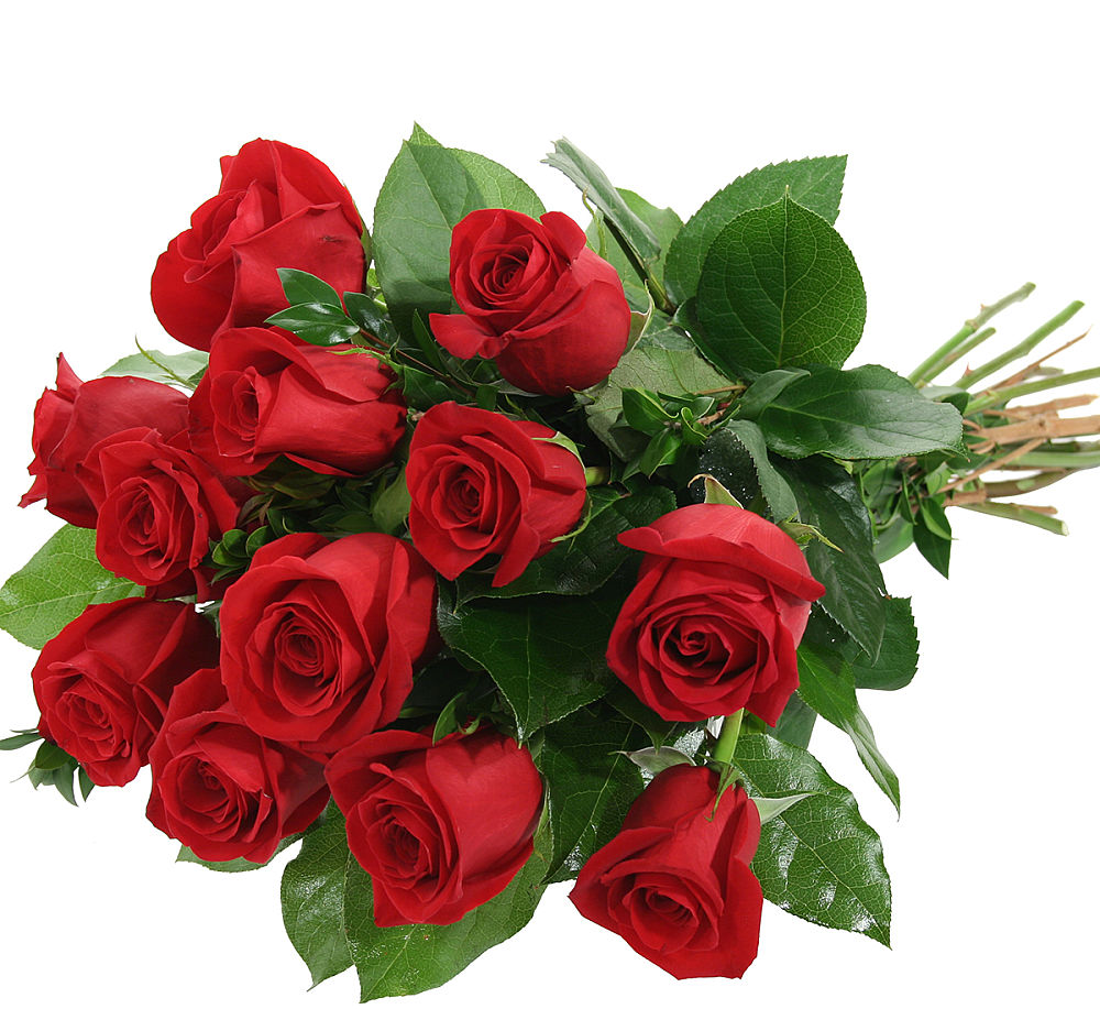 Red Rose Bouquet · UK Flower Delivery · Canada Flowers