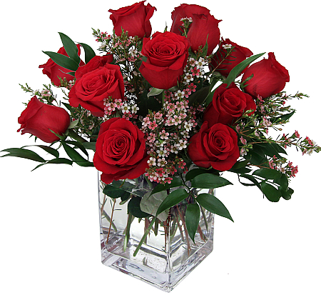 12 Red Roses USA Flower Delivery Birthday Flowers Canada