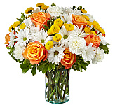 Send fresh flowers for any occasion or 'just because' for same day flower delivery in Canada. Our prices are in Canadian dollars and there are no extra service charges. Don't see quite what you're looking for? Place a custom flower order any time online. It's easy! Canada Flowers now has over 50 years experience sending fresh any time flowers across Canada. We are Canada's National Florist.