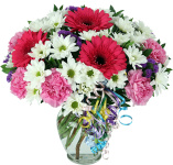 Send Birthday Flowers same day across Canada with Canada Flowers, Canada's National Florist. Featuring flower delivery included prices in Canadian dollars. Order by 2 pm EDT for same day delivery to most towns and cities across Canada. Our Canada Flowers Originals happy birthday bouquets and arrangements will make someone's birthday a special one this year.