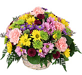 Budget flowers are competitively priced for discriminating flower shoppers on a budget, many even under $50!. These beautiful flowers are carefully designed to suit most occasions or sentiments except at a low cost. It's okay to feel good about flowers for cheap prices in Canada when they're this pretty!