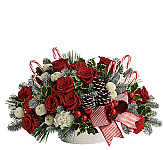 Choose from our best selling and most popular Christmas Flower Arrangements, featuring beautiful arrangements for the Christmas holiday season. We've reviewed our most popular Christmas arrangements and listed them all here for quick and easy online ordering for delivery in Canada. Merry Christmas from all the staff at Canada Flowers. Enjoy your holiday shopping!