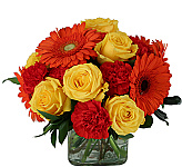 Send Father's Day Flowers same day in Canada with Canada Flowers, Canada's National Florist. Prices in Canadian dollars. Order by 2 pm EDT for same day birthday flower delivery to most towns and cities across Canada.
