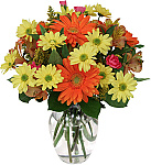 At Canada Flowers we have created a wonderful catalogue of flowers - just between friends. Go ahead and surprise someone you care about today whether it be a girlfriend, boyfriend or just a friend who could use some cheering up. They will love you for it! Prices below are in Canadian dollars and delivery is available to almost anywhere in Canada. Go ahead and make a friend smile today with beautiful, uplifting flowers from Canada Flowers.
