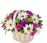 Administrative Professionals Day is Wednesday, April 24th, 2019 in Canada. Canada Flowers now features special flower arrangements and bouquets perfectly suited for celebrating the important contributors to any office, small business or large corporation! Some of our