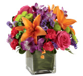 Welcome to our FTD® Birthday Flowers catalogue. All FTD® Birthday Flowers are hand-made by professional FTD® florists and are delivered same day across most of Canada. We are Canada Flowers, specializing in the very best local Canadian FTD® birthday flower arrangements and bouquets available for delivery.