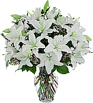 Welcome to Canada Flowers Funeral Flower Arrangements catalogue, featuring flowers for the funeral home, mortuary or funeral service. All prices are in Canadian dollars. Taxes are added at checkout. Same day delivery for many funeral arrangements is available. For premium gifts and rare flowers, 24 or 36 hours is required. Featuring a large assortment of traditional, popular funeral arrangements and funeral tributes for flowers delivery in Canada. If you need a larger, more extravagant item, you can try our original Funeral Sprays or Funeral Wreaths.