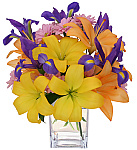 Featuring a wonderful selection of our popular lily bouquets and arrangements for delivery in Canada found throughout our Canada Flowers website. From Asiatic lilies, Casablanca lilies, Stargazers and more - there's something to send for everyone and every occasion. Enjoy!
