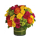 Canada Flowers is thrilled to offer a new and improved catalogue of florist-designed Teleflora Flower arrangements for any occasion available for same day delivery across Canada. Our Teleflora anytime flowers are priced in Canadian dollars. These beautiful floral gifts are delivered through our network of professional Teleflora florists. You can trust Canada Flowers to deliver the following flower gifts suitable for sending on any occasion or sentiment, or 'just because'. Don't see an arrangement you're looking for? Try browsing our Best Selling Flowers or see our New Flower Arrangements.