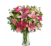 Send congratulations flowers and gifts to almost anywhere in Canada with Canada Flowers. Featuring our all-new catalogue of flowers to express your joy and congratulations to friends, family, loved ones, co-workers and employees. These bouquets and flower arrangements have been selected to help you say,