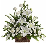 Teleflora Sympathy Flowers are suitable for sending to the family home or residence at a time of loss. At Canada Flowers, we take the very best care in ensuring that your important sympathy floral gifts are delivered on time, fresh and beautiful in Canada. All prices seen below are in Canadian dollars and available for delivery to most Canadian cities and towns. Our award-winning service, quality and satisfaction is 100% guaranteed. For more sympathy arrangements, see our Canada Flowers original Sympathy Flowers.