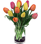 Welcome to our fresh tulips catalogue! While tulips can readily be found at flower shops in larger cities and metropolitan areas in Canada year round, for the rest of Canadians, tulips are a seasonal variety. Tulips are widely available to send for delivery from January through May across much of the country. We are happy to offer a nice selection of fresh, affordable and beautiful tulips, both in arrangements, and as bouquets. Enjoy!