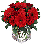 Shop online for Love and Romance Flowers. Send flowers across the USA with Canada Flowers, Canada's National Florist. Serving Canada, USA and the world.