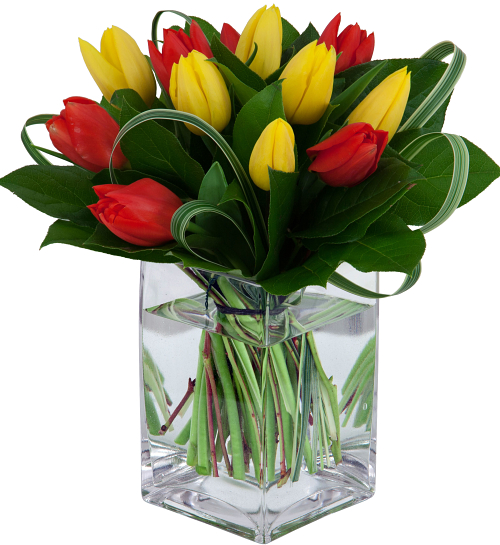 Popular Flowers In Canada: Best Selling Flowers · Sunglow Tulips #BS5AA · Canada Flowers