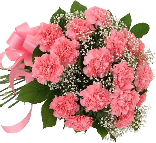 18 Pink Carnations Bouquet