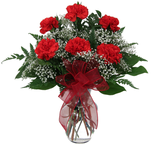 Six Red Carnations