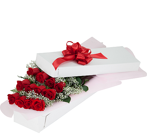 Red Roses, Boxed