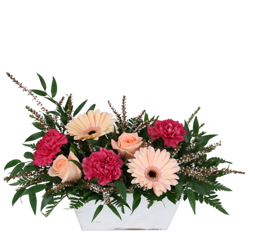 anytime flowers more than words an110aa canada flowers ca