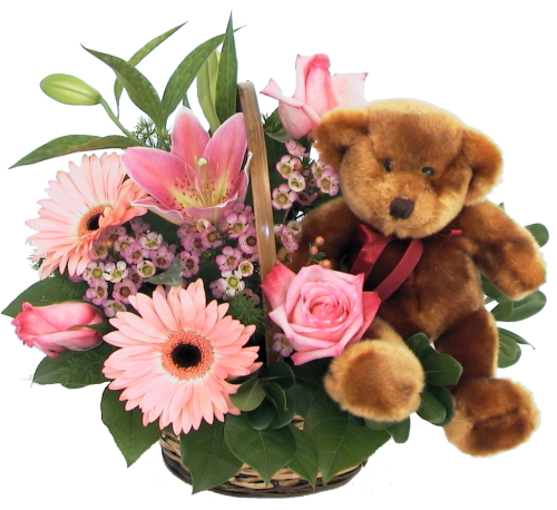 Pink Flowers and Teddy