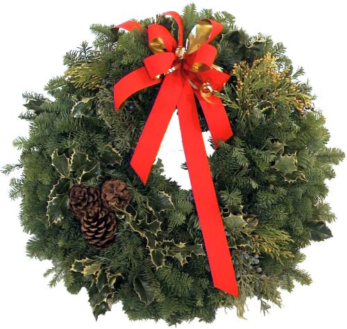 Christmas Plants Poinsettias Classic Christmas Wreath Cpl3aa