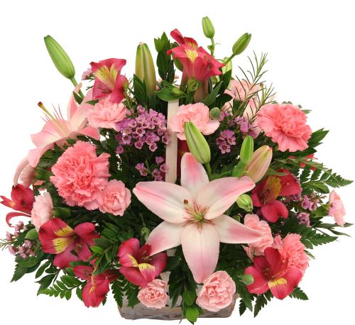 France flower delivery pink flower basket fra9aa canada flowers pink flower basket mightylinksfo