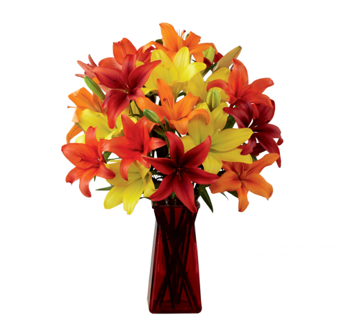 FTD Happy Thoughts Bouquet