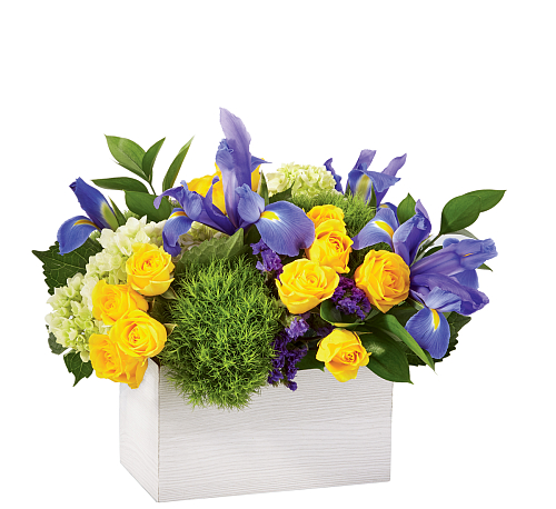 FTD® Fields of Iris Bouquet