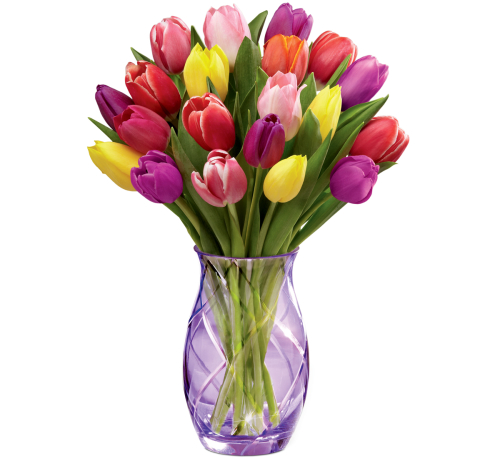 Ftd spring flowers 17 s2 sp1fa canada flowers ftd spring tulip bouqet mightylinksfo
