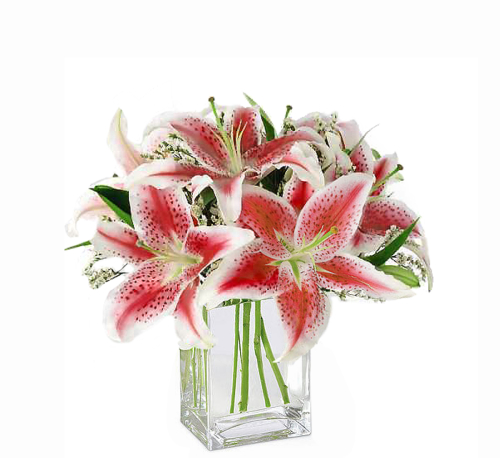FTD Pink Lily Bouquet