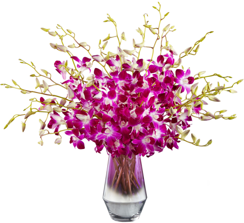 FTD® Pink at Heart Orchid Bouquet