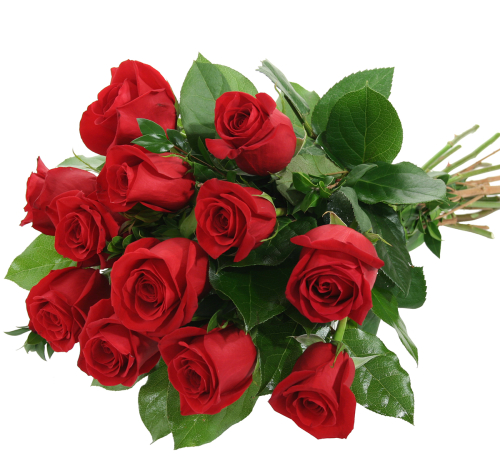 Italy Flower Delivery Red Rose Bouquet Ita12aa Canada Flowersca