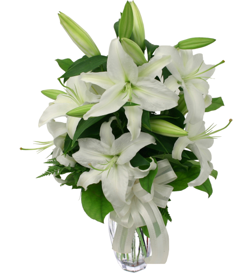Lilies delivery white lilies li9aa canada flowers reviewsmspy