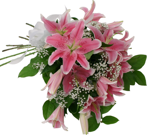 Netherlands flower delivery stargazers nla5aa canada flowers you are viewing a canada flowers original floral gift found nowhere else online izmirmasajfo