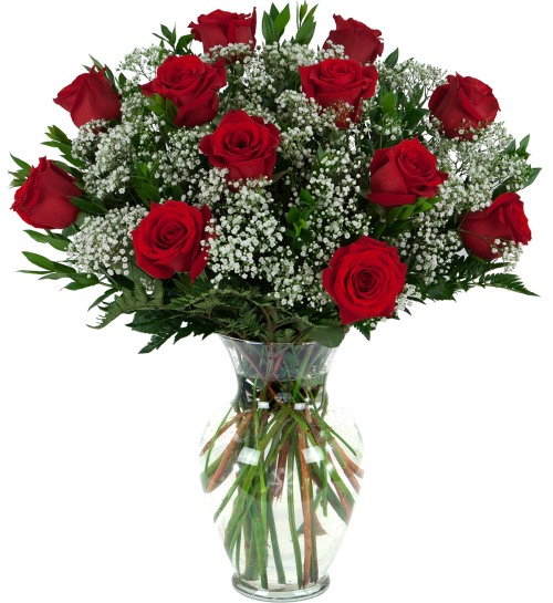 roses one dozen red roses ro1aa canada flowers ca