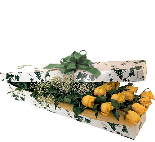 12 Yellow Roses, Boxed