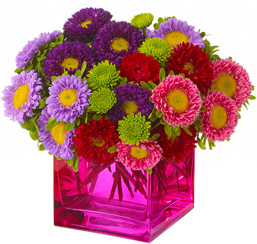 Teleflora's Mad about Magenta Bouquet